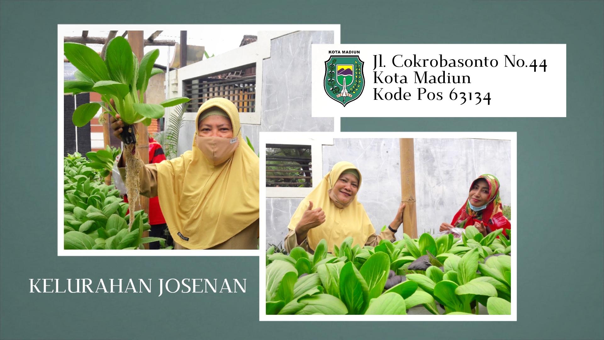 Kelurahan Josenan -Jalan Cokrobasonto No.44 Kota Madiun